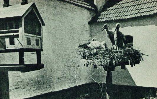 Storkerede 1958-60 Vemb